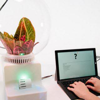 Bitkilerle konuşmaya hazır mıyız?