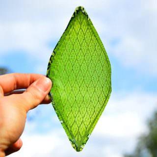 İnsan yapımı biyolojik yaprak geliştirildi