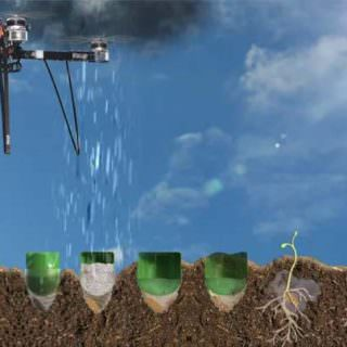 Ağaç dikme işi drone'lara emanet