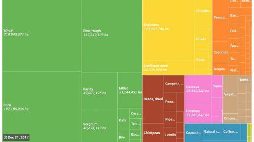 Üretim alanı bakımından Dünyada ve Türkiye'de en yaygın tarımsal ürünler nelerdir?